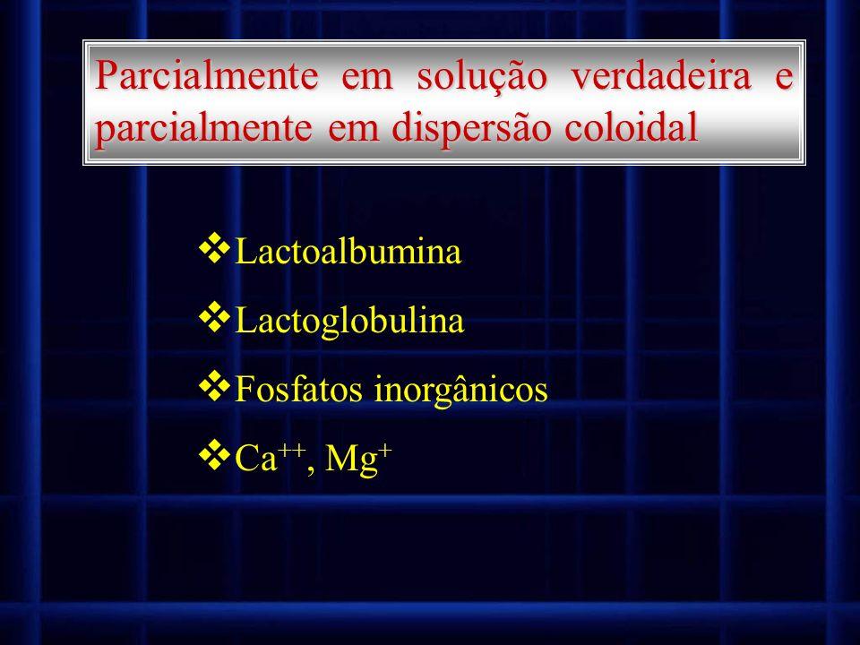Parcialmente em solução verdadeira e parcialmente em dispersão coloidal Lactoalbumina Lactoglobulina Fosfatos inorgânicos Ca ++, Mg +