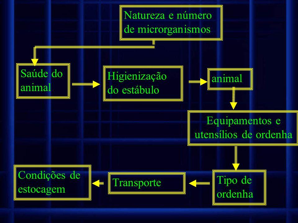 Natureza e número de microrganismos Saúde do animal Higienização do estábulo animal Equipamentos e utensílios de ordenha Tipo de ordenha Condições de