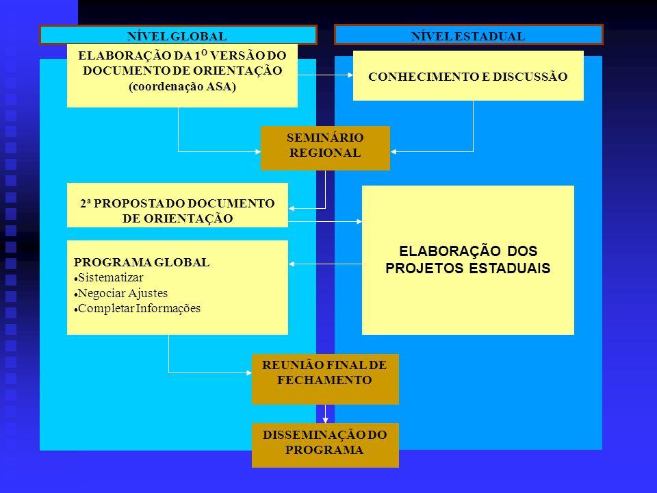 PROJETO DEMONSTRATIVO DE GESTÃO DE RECURSOS HÍDRICOS PREPARAÇÃO DO PROGRAMA DE UM MILHÃO DE CISTERNAS AÇÕES REGIONAIS AÇÕES ESTADUAIS E LOCAIS CONSOLI