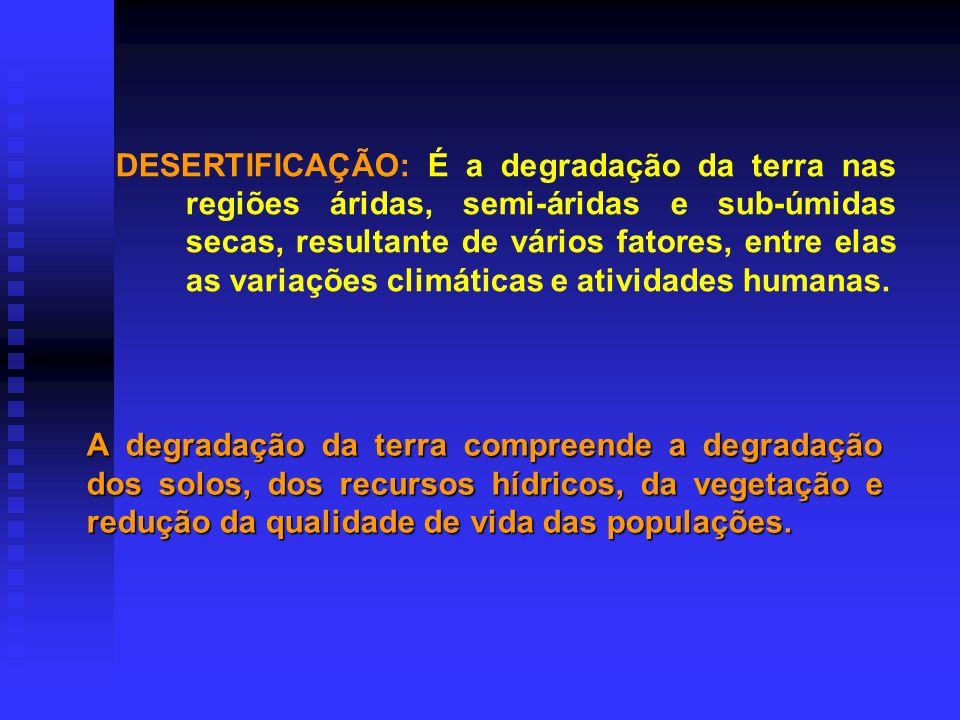 CONVENÇÃO DAS NAÇÕES UNIDAS DE COMBATE A DESERTIFICAÇÃO 1993/1994 Enfoca os problemas econômicos das regiões semi-áridas e salienta o fato de que a su