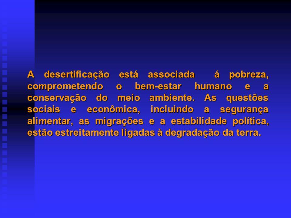 NÍVEL GLOBAL NÍVEL ESTADUAL ELABORAÇÃO DA 1 O VERSÃO DO DOCUMENTO DE ORIENTAÇÃO (coordenação ASA) CONHECIMENTO E DISCUSSÃO SEMINÁRIO REGIONAL 2 a PROPOSTA DO DOCUMENTO DE ORIENTAÇÃO ELABORAÇÃO DOS PROJETOS ESTADUAIS PROGRAMA GLOBAL l Sistematizar l Negociar Ajustes l Completar Informações DISSEMINAÇÃO DO PROGRAMA REUNIÃO FINAL DE FECHAMENTO