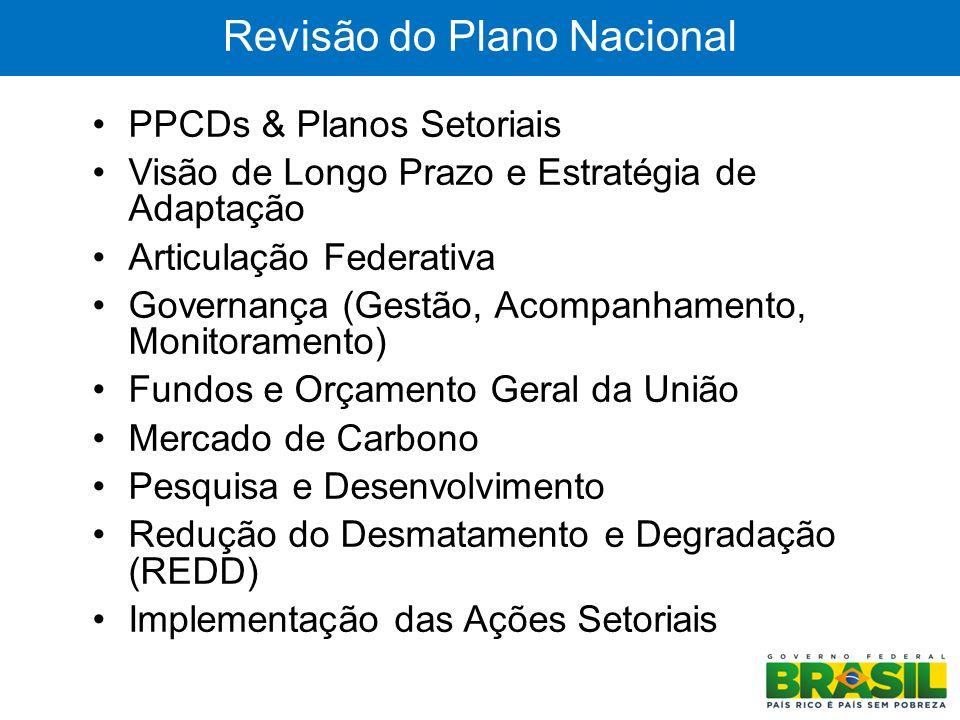 12 Revisão do Plano Nacional PPCDs & Planos Setoriais Visão de Longo Prazo e Estratégia de Adaptação Articulação Federativa Governança (Gestão, Acompa