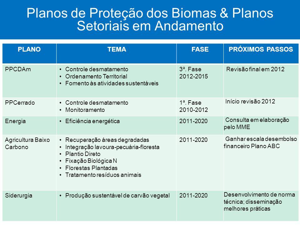 Planos de Proteção dos Biomas & Planos Setoriais em Andamento PLANOTEMAFASEPRÓXIMOS PASSOS PPCDAmControle desmatamento Ordenamento Territorial Fomento