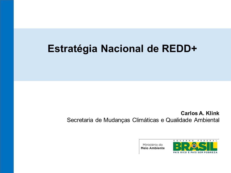 Estratégia Nacional de REDD+ Carlos A. Klink Secretaria de Mudanças Climáticas e Qualidade Ambiental
