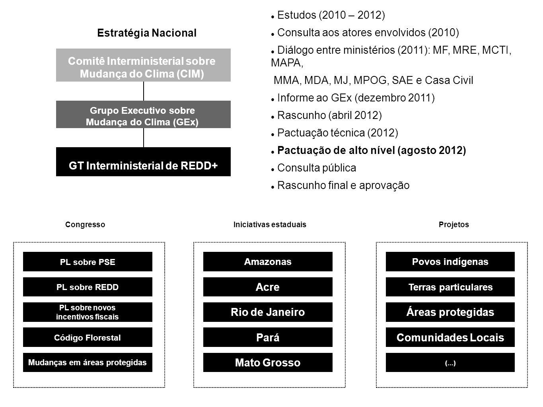 Resultados - Redução de emissões de desmatamento e degradação - Aumento de estoques/recuperação florestal Investimentos & Benefícios - Agentes e executores - Detentores de florestas Ações - PPCDs - Programas - Iniciativas privadas Recursos - Financiamento com base em resultados - Fundos públicos e privados - Mercado e não mercado