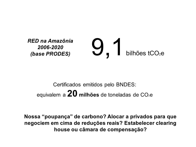 RED na Amazônia 2006-2020 (base PRODES) 9,1 bilhões tCO 2 e Certificados emitidos pelo BNDES: equivalem a 20 milhões de toneladas de CO 2 e Nossa poup