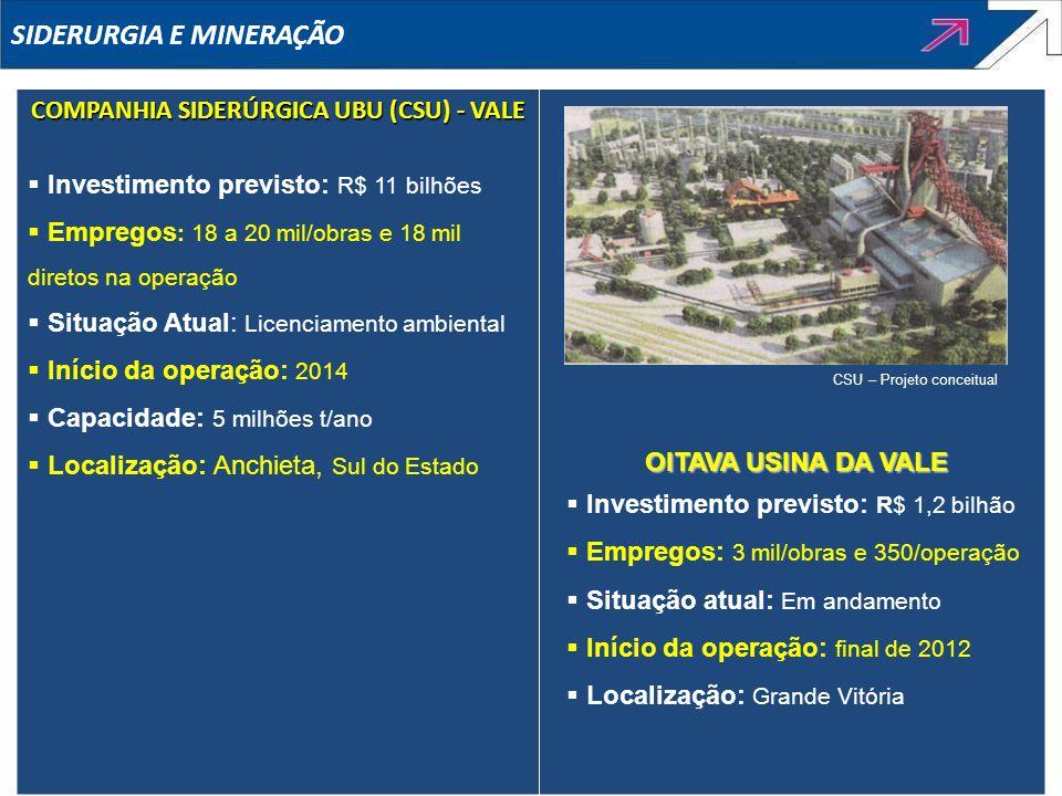 COMPANHIA SIDERÚRGICA UBU (CSU) - VALE Investimento previsto: R$ 11 bilhões Empregos : 18 a 20 mil/obras e 18 mil diretos na operação Situação Atual:
