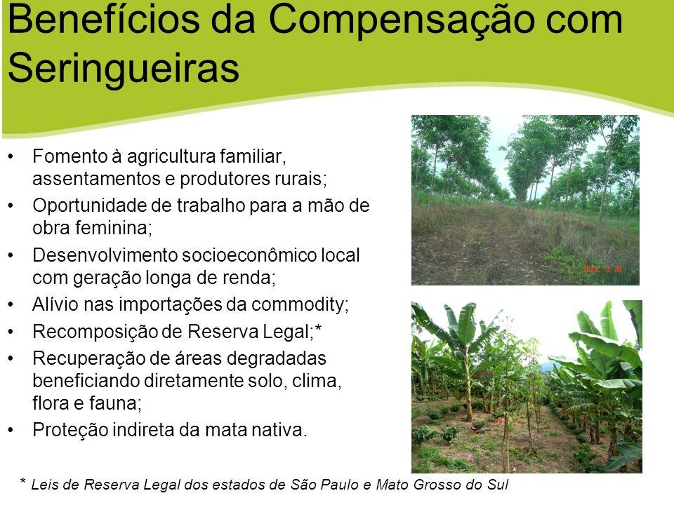 Benefícios da Compensação com Seringueiras Fomento à agricultura familiar, assentamentos e produtores rurais; Oportunidade de trabalho para a mão de o