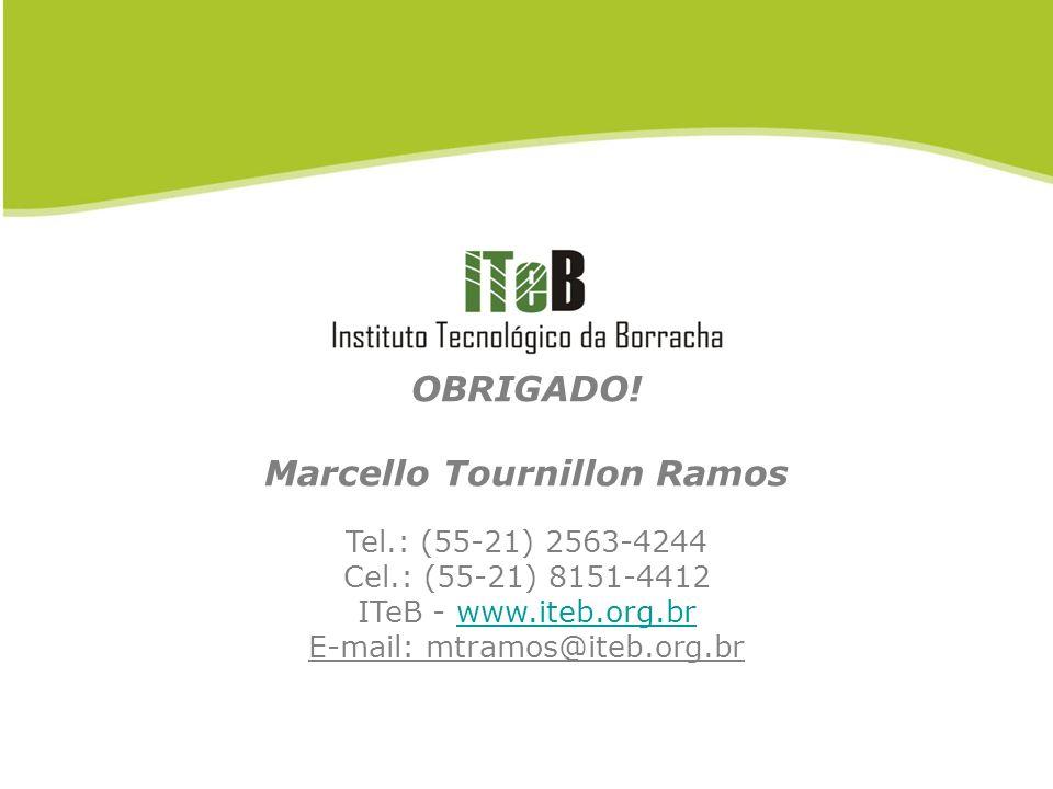 OBRIGADO! Marcello Tournillon Ramos Tel.: (55-21) 2563-4244 Cel.: (55-21) 8151-4412 ITeB - www.iteb.org.brwww.iteb.org.br E-mail: mtramos@iteb.org.br