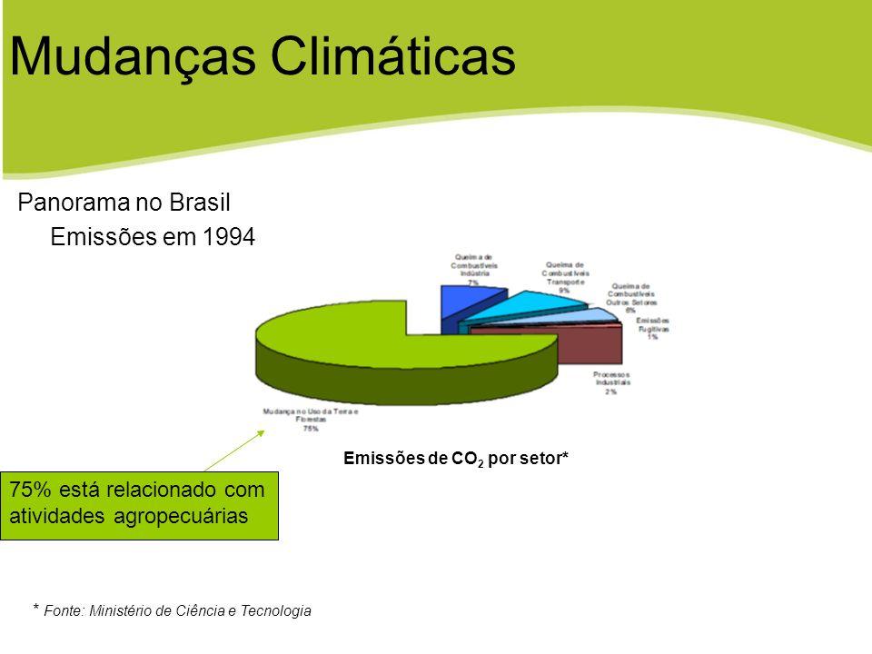 Emissão de CH 4 por setor* * Fonte: Ministério de Ciência e Tecnologia Panorama no Brasil Emissões em 1994 Mudanças Climáticas 82% das emissões relacionadas a atividades agropecuárias