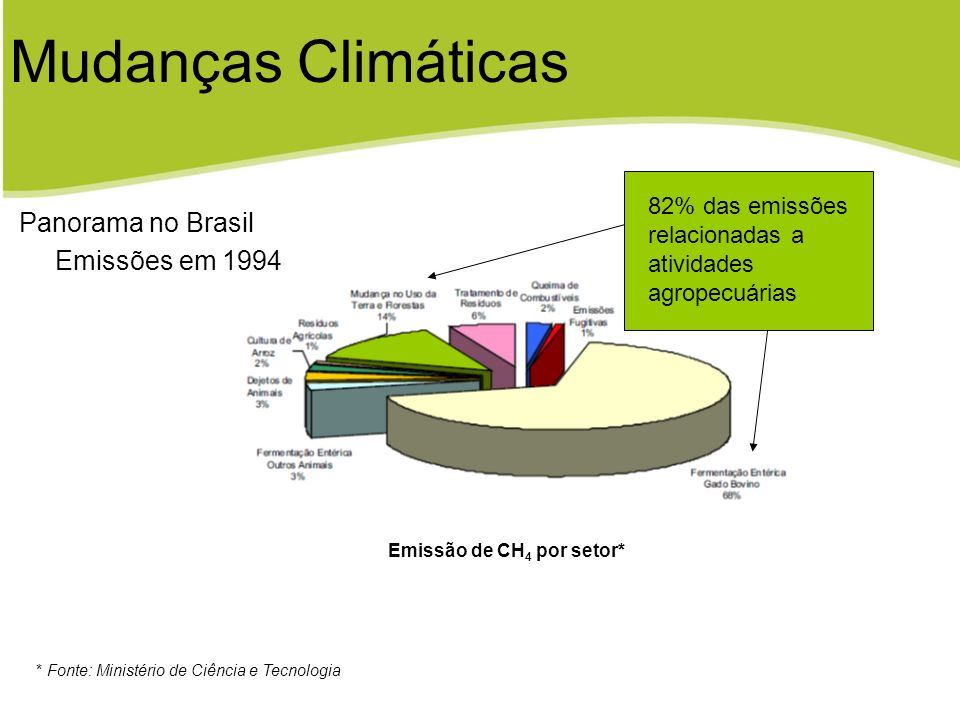 Emissão de CH 4 por setor* * Fonte: Ministério de Ciência e Tecnologia Panorama no Brasil Emissões em 1994 Mudanças Climáticas 82% das emissões relaci