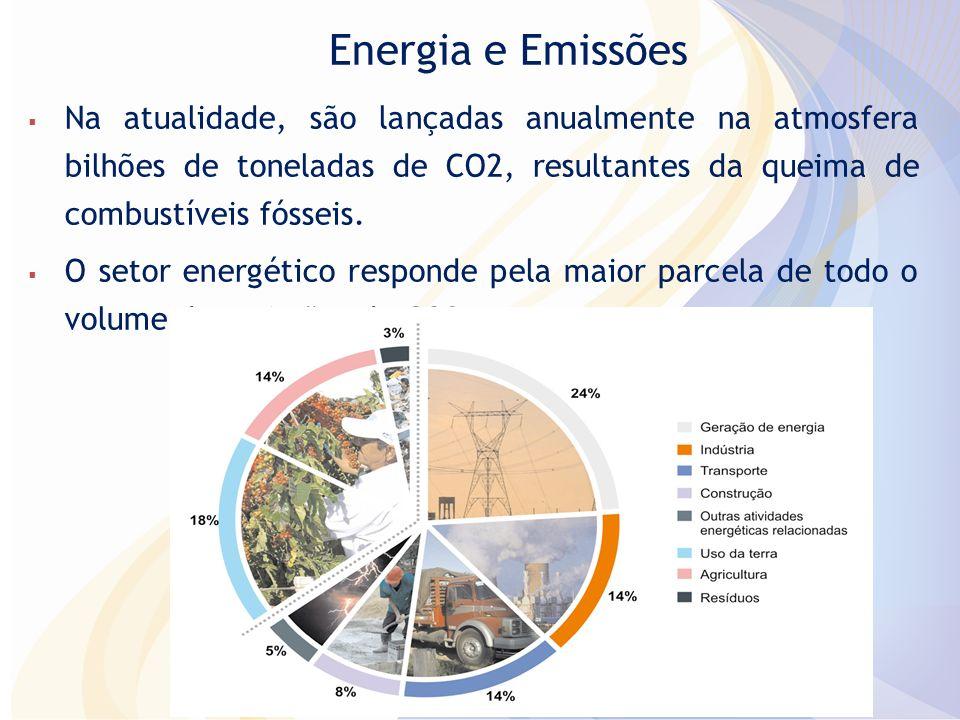 Ações para Mitigação de Emissões até 2020 Ações de Mitigação (NAMAs)2020 (tendencial) Amplitude da redução 2020 (mi tCO2) Proporção de Redução Uso da terra1084669 24,7% Red Desmatamento Amazônia (80%) 564 20,9% Red Desmatamento no Cerrado (40%) 104 3,9% Agropecuária6271331664,9%6,1% Recuperação de Pastos 831043,1%3,8% ILP - Integração Lavoura Pecuária 18220,7%0,8% Plantio Direto 16200,6%0,7% Fixação Biológica de Nitrogenio 16200,6%0,7% Energia9011662076,1%7,7% Eficiência Energética 12150,4%0,6% Incremento do uso de biocombustíveis 48601,8%2,2% Expansão da oferta de energia por Hidroelétricas 79992,9%3,7% Fontes Alternativas (PCH, Bioeletricidade, eólica) 26331,0%1,2% Outros928100,3%0,4% Siderurgia – substituir carvão de desmate por plantado 8100,3%0,4% Total2703975105236,1%38,9% Iniciativas Nacionais