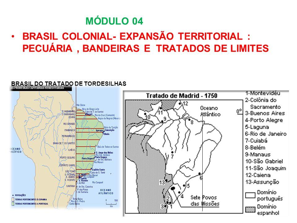MÓDULO 04 BRASIL COLONIAL- EXPANSÃO TERRITORIAL : PECUÁRIA, BANDEIRAS E TRATADOS DE LIMITES BRASIL DO TRATADO DE TORDESILHAS