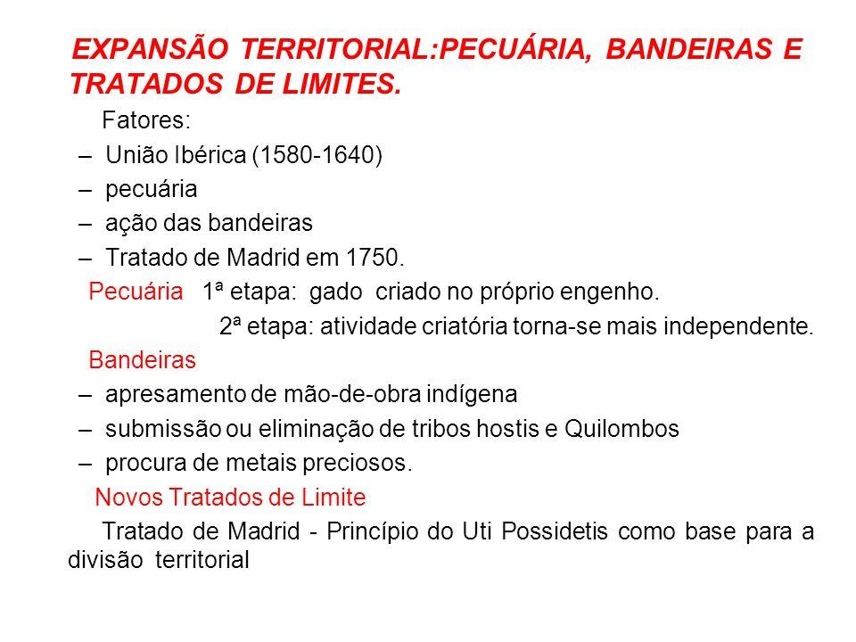 EXPANSÃO TERRITORIAL:PECUÁRIA, BANDEIRAS E TRATADOS DE LIMITES. Fatores: –União Ibérica (1580-1640) –pecuária –ação das bandeiras –Tratado de Madrid e
