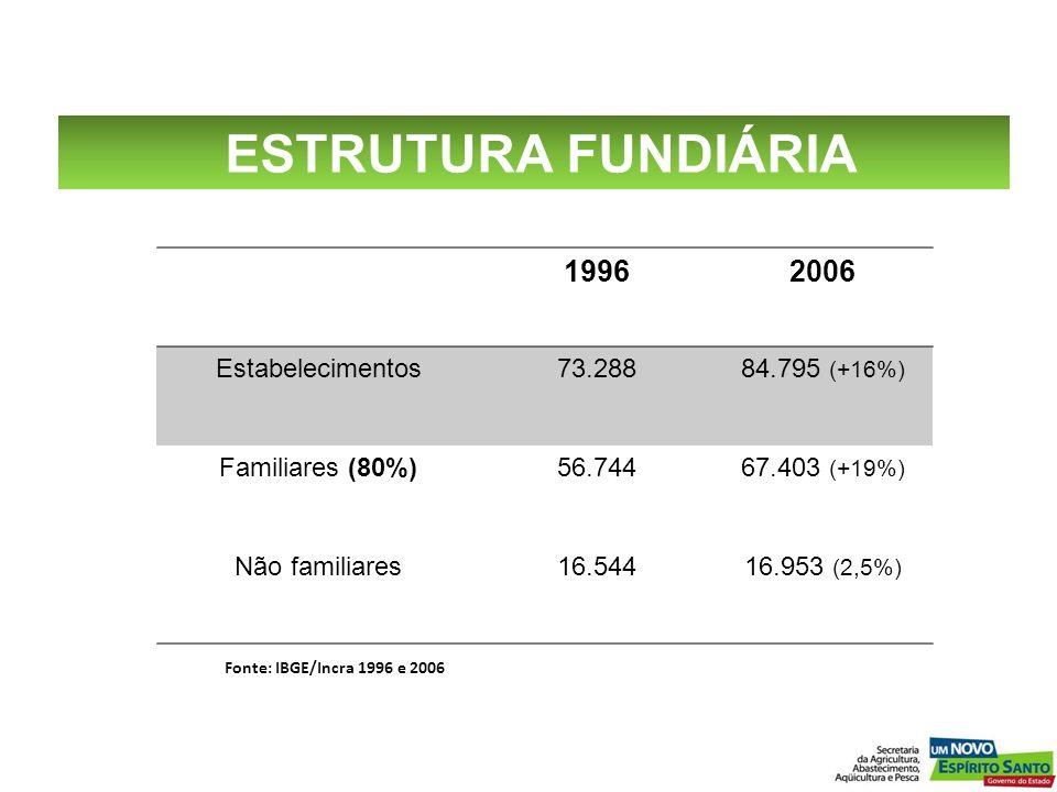 19962006 Estabelecimentos73.28884.795 (+16%) Familiares (80%)56.74467.403 (+19%) Não familiares16.54416.953 (2,5%) Fonte: IBGE/Incra 1996 e 2006 ESTRU