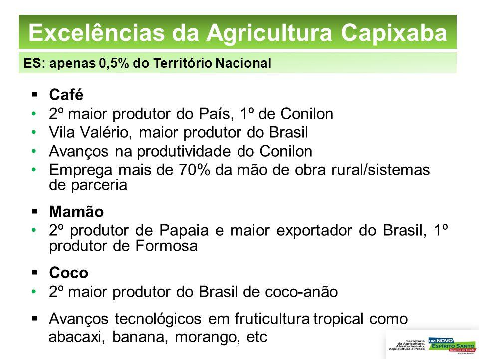 Excelências da Agricultura Capixaba Café 2º maior produtor do País, 1º de Conilon Vila Valério, maior produtor do Brasil Avanços na produtividade do C