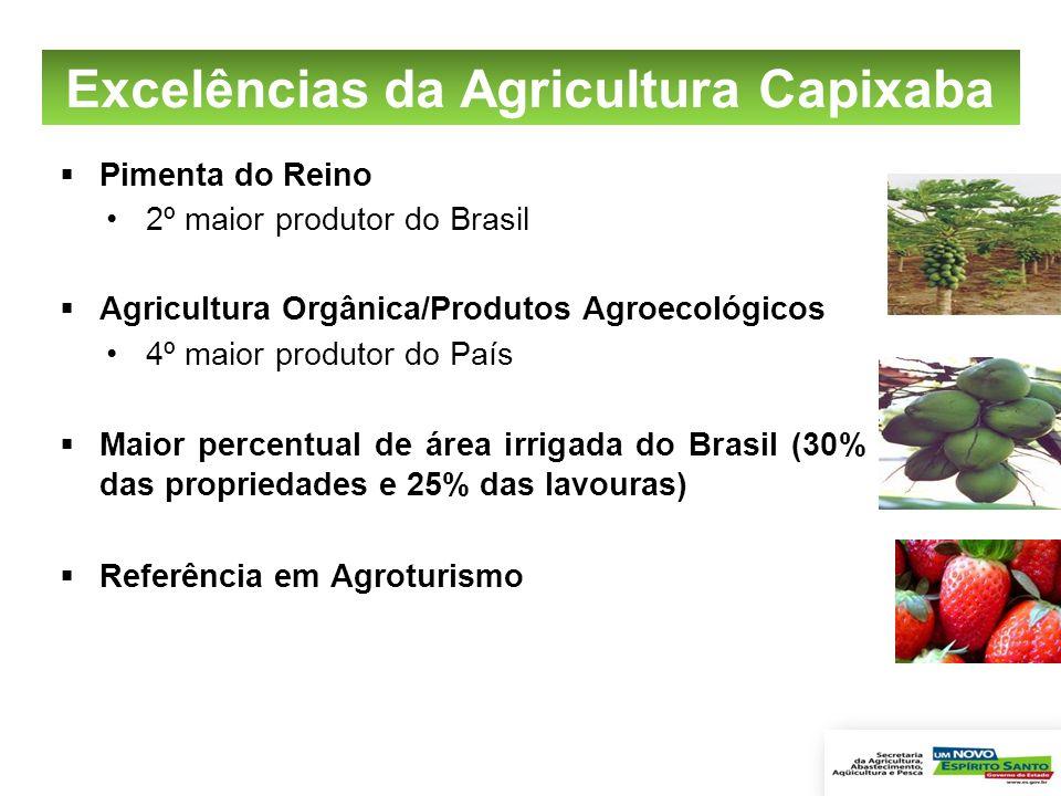 Excelências da Agricultura Capixaba Pimenta do Reino 2º maior produtor do Brasil Agricultura Orgânica/Produtos Agroecológicos 4º maior produtor do Paí
