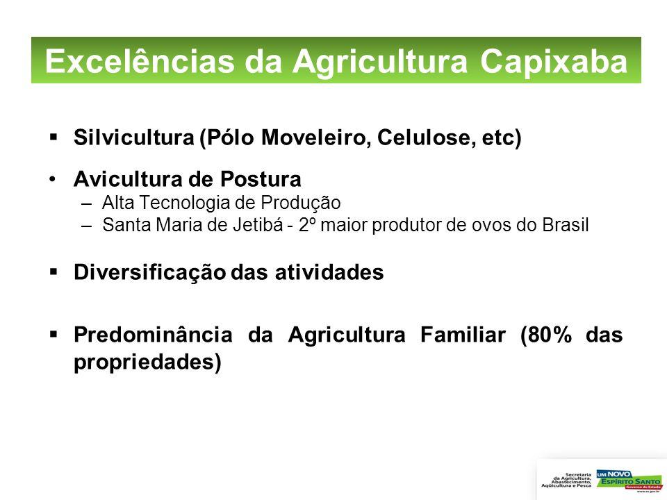 Excelências da Agricultura Capixaba Silvicultura (Pólo Moveleiro, Celulose, etc) Avicultura de Postura –Alta Tecnologia de Produção –Santa Maria de Je