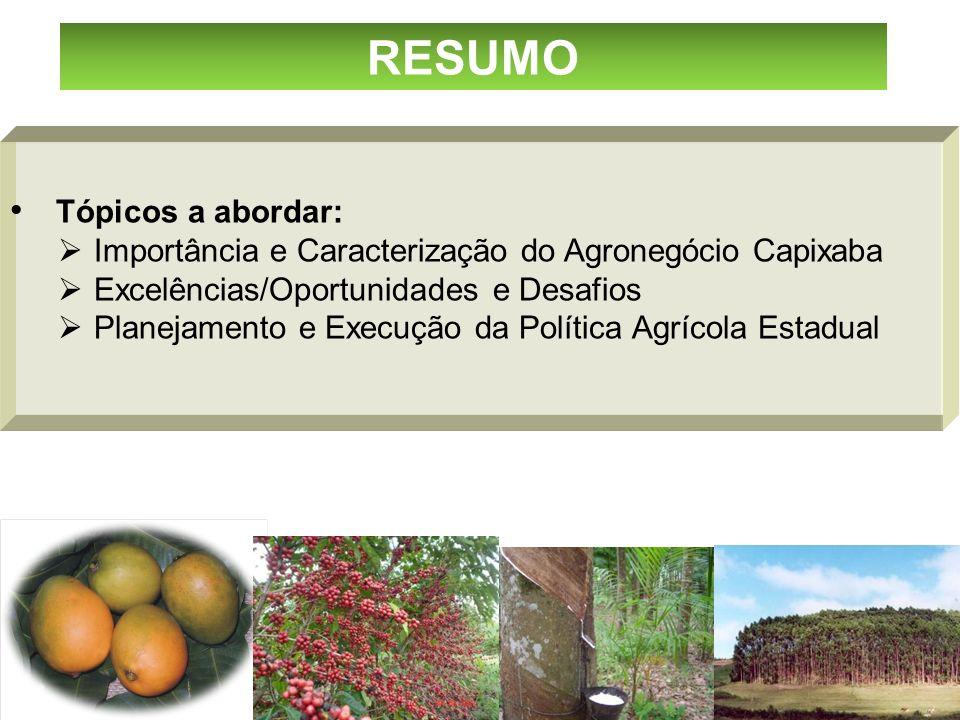 Tópicos a abordar: Importância e Caracterização do Agronegócio Capixaba Excelências/Oportunidades e Desafios Planejamento e Execução da Política Agríc