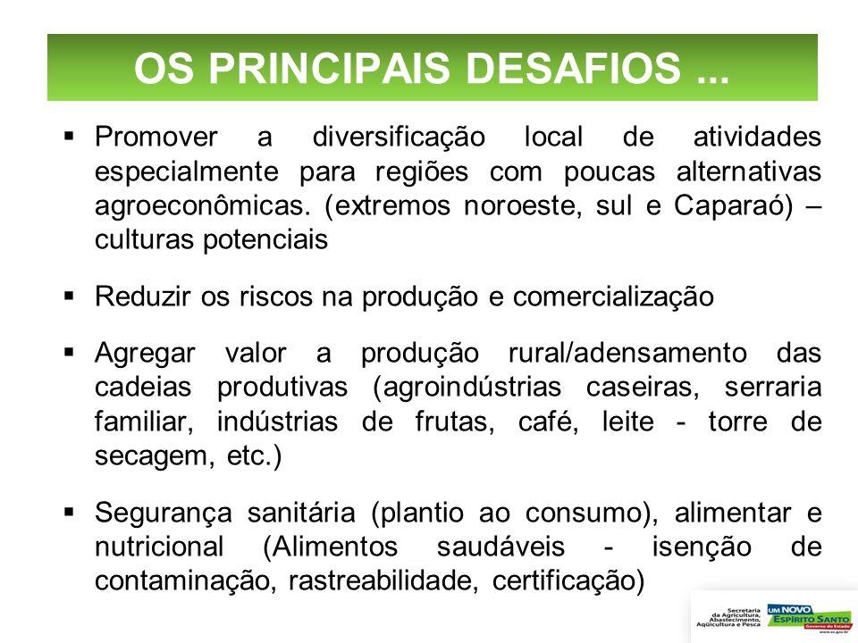 OS PRINCIPAIS DESAFIOS... Promover a diversificação local de atividades especialmente para regiões com poucas alternativas agroeconômicas. (extremos n