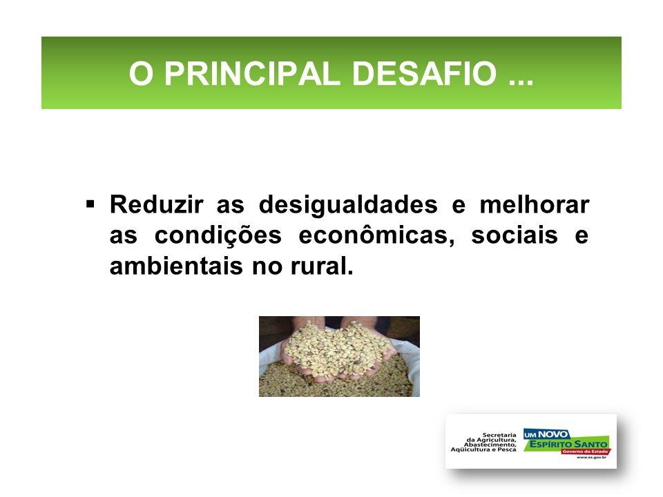 O PRINCIPAL DESAFIO... Reduzir as desigualdades e melhorar as condições econômicas, sociais e ambientais no rural.