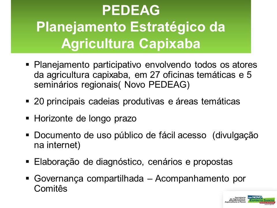 Planejamento participativo envolvendo todos os atores da agricultura capixaba, em 27 oficinas temáticas e 5 seminários regionais( Novo PEDEAG) 20 prin
