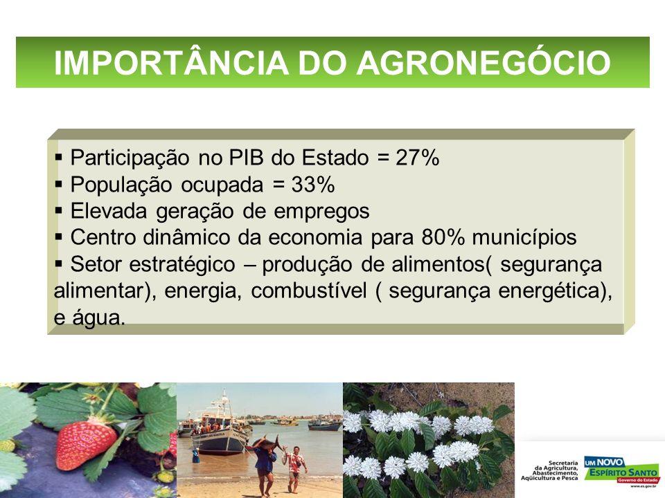 Participação no PIB do Estado = 27% População ocupada = 33% Elevada geração de empregos Centro dinâmico da economia para 80% municípios Setor estratég