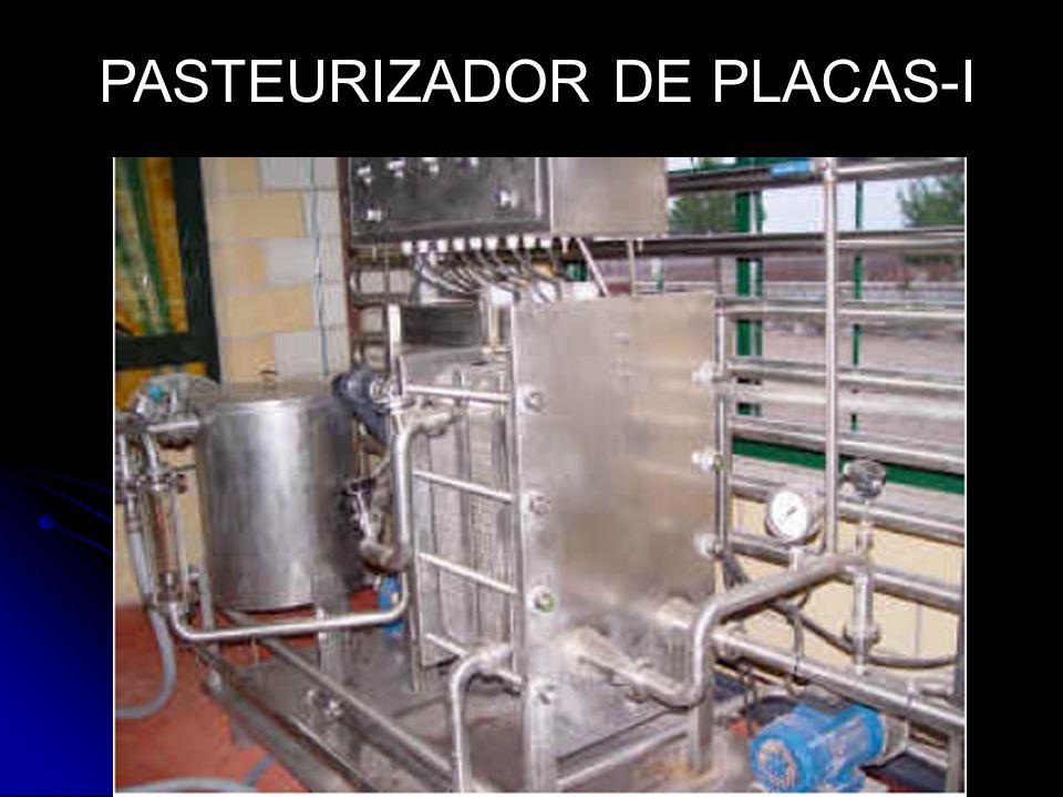 PASTEURIZADOR DE PLACAS-I