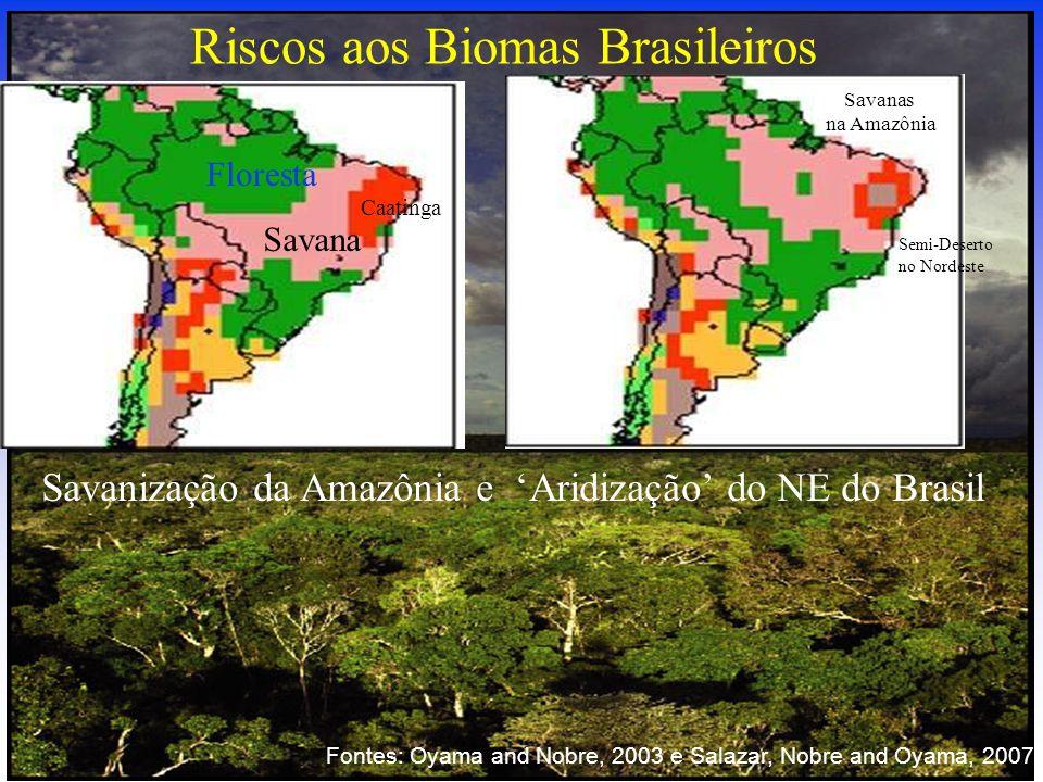 Savanização da Amazônia e Aridização do NE do Brasil Riscos aos Biomas Brasileiros Floresta Savana Caatinga Savanas na Amazônia Semi-Deserto no Nordes
