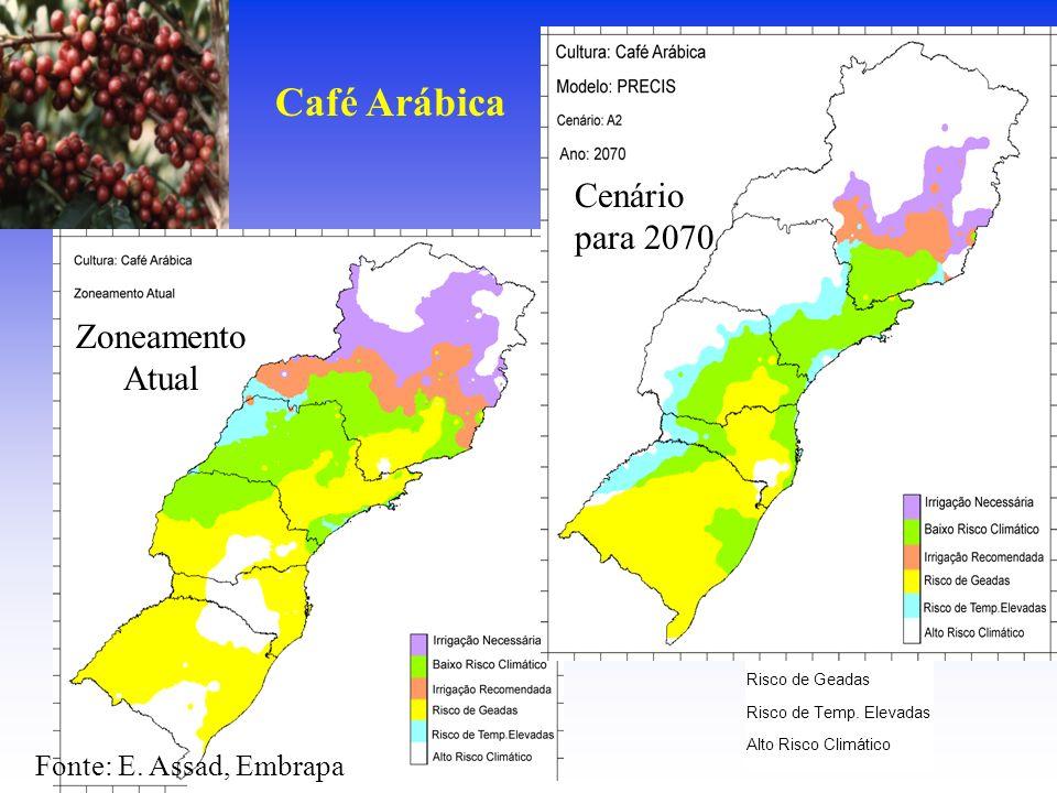 Irrigação Necessária Baixo Risco Climático Irrigação Recomendada Risco de Geadas Risco de Temp. Elevadas Alto Risco Climático Fonte: E. Assad, Embrapa