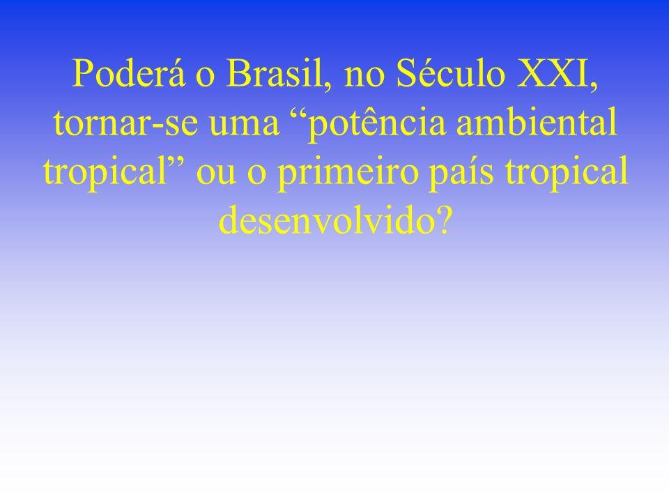 Poderá o Brasil, no Século XXI, tornar-se uma potência ambiental tropical ou o primeiro país tropical desenvolvido?