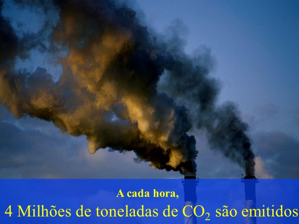 A cada hora, 4 Milhões de toneladas de CO 2 são emitidos