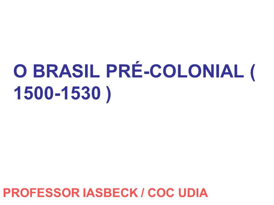 O BRASIL PRÉ-COLONIAL ( 1500-1530 ) PROFESSOR IASBECK / COC UDIA