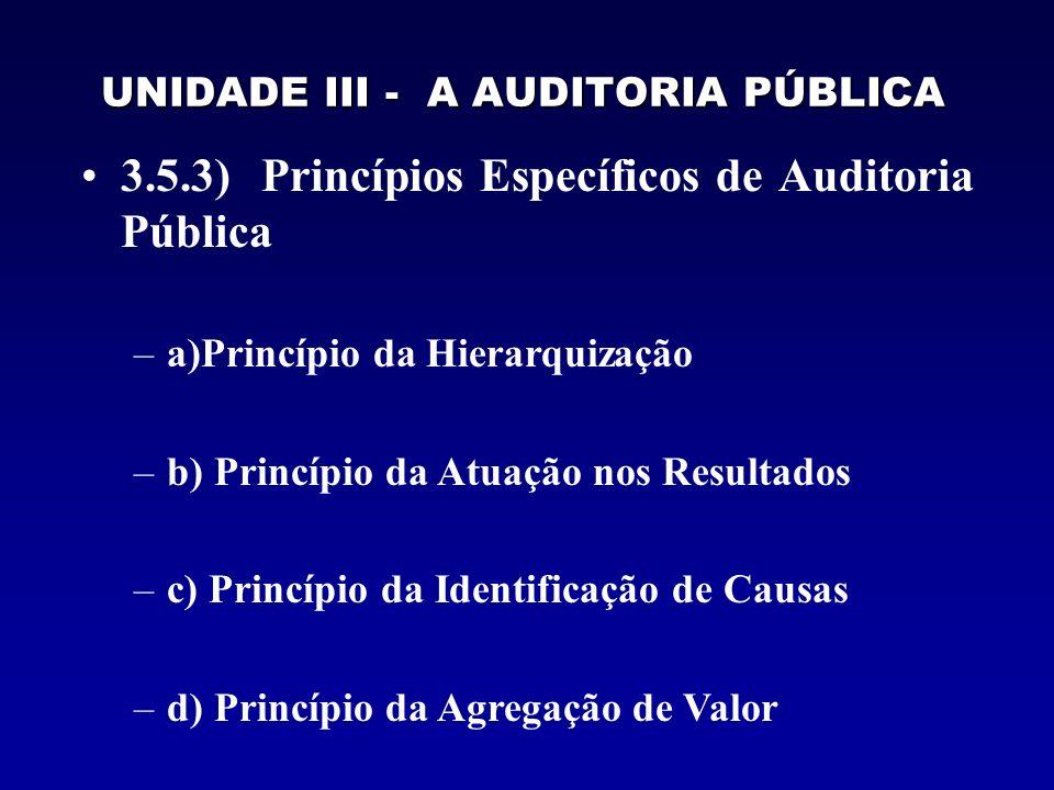 UNIDADE III - A AUDITORIA PÚBLICA 3.5.3) Princípios Específicos de Auditoria Pública –a)Princípio da Hierarquização –b) Princípio da Atuação nos Resul