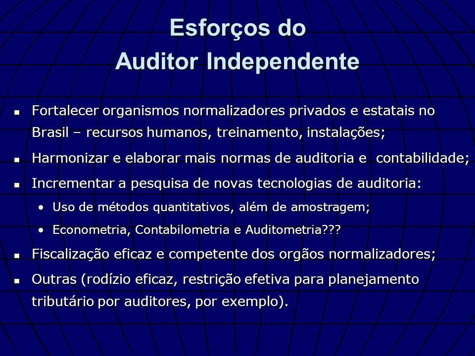 Esforços do Auditor Independente Fortalecer organismos normalizadores privados e estatais no Brasil – recursos humanos, treinamento, instalações; Fort