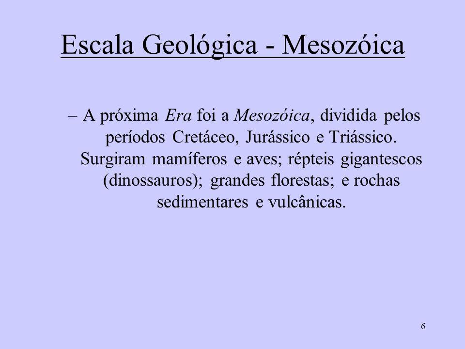6 Escala Geológica - Mesozóica –A próxima Era foi a Mesozóica, dividida pelos períodos Cretáceo, Jurássico e Triássico. Surgiram mamíferos e aves; rép
