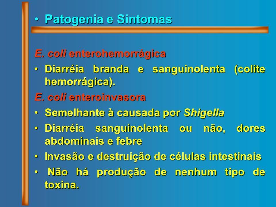 Patogenia e SintomasPatogenia e Sintomas E. coli enterohemorrágica Diarréia branda e sanguinolenta (colite hemorrágica).Diarréia branda e sanguinolent