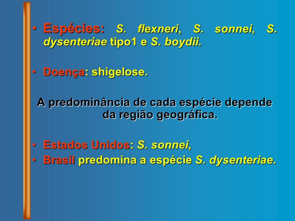 Espécies: S. flexneri, S. sonnei, S. dysenteriae tipo1 e S. boydii.Espécies: S. flexneri, S. sonnei, S. dysenteriae tipo1 e S. boydii. Doença: shigelo