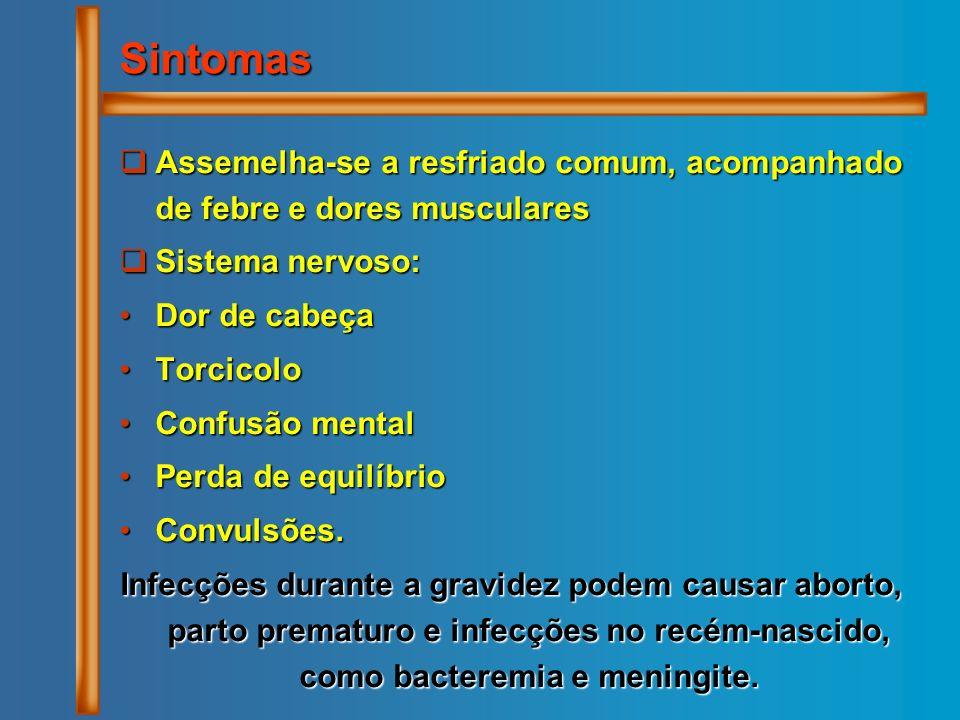Assemelha-se a resfriado comum, acompanhado de febre e dores musculares Assemelha-se a resfriado comum, acompanhado de febre e dores musculares Sistem