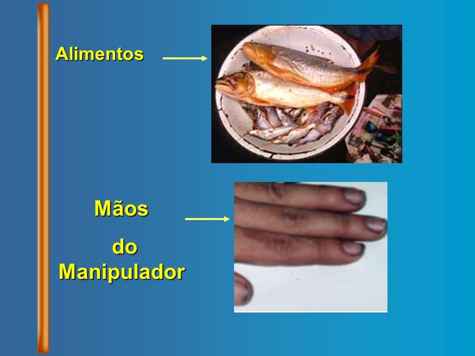 Alimentos Mãos do Manipulador do Manipulador