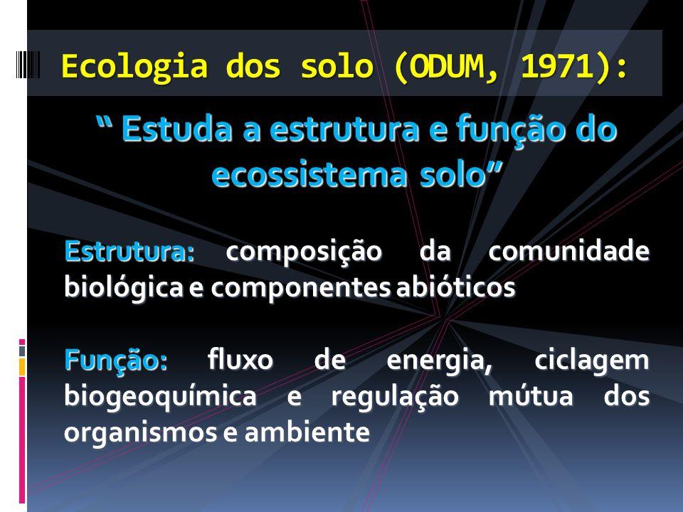 Estuda a estrutura e função do ecossistema solo Estuda a estrutura e função do ecossistema solo Estrutura:composição da comunidade biológica e compone