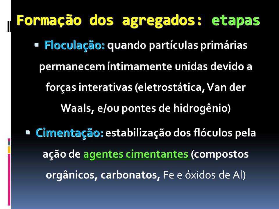 Formação dos agregados: etapas Floculação: qua Floculação: qua ndo partículas primárias permanecem íntimamente unidas devido a forças interativas (ele