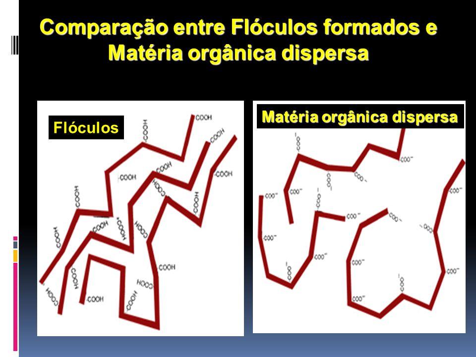 Comparação entre Flóculos formados e Matéria orgânica dispersa Flóculos Matéria orgânica dispersa