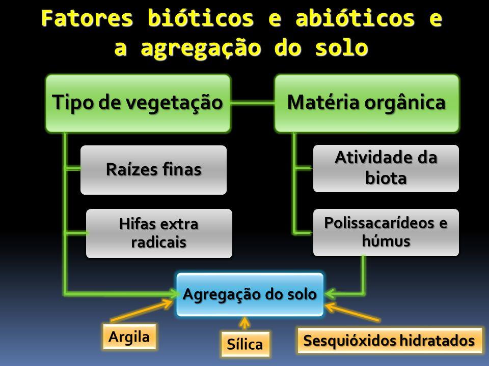Fatores bióticos e abióticos e a agregação do solo Tipo de vegetação Raízes finas Hifas extra radicais Agregação do solo Matéria orgânica Atividade da