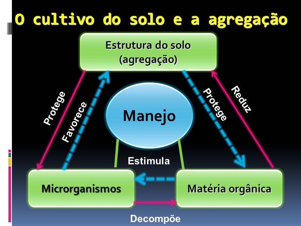 O cultivo do solo e a agregação Estrutura do solo (agregação) Matéria orgânica Microrganismos Manejo Protege Favorece Estimula Decompõe Reduz Protege