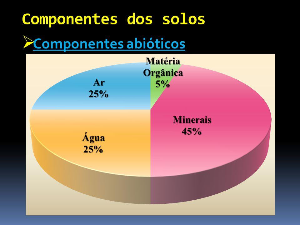 Componentes abióticos Componentes abióticos Componentes dos solos