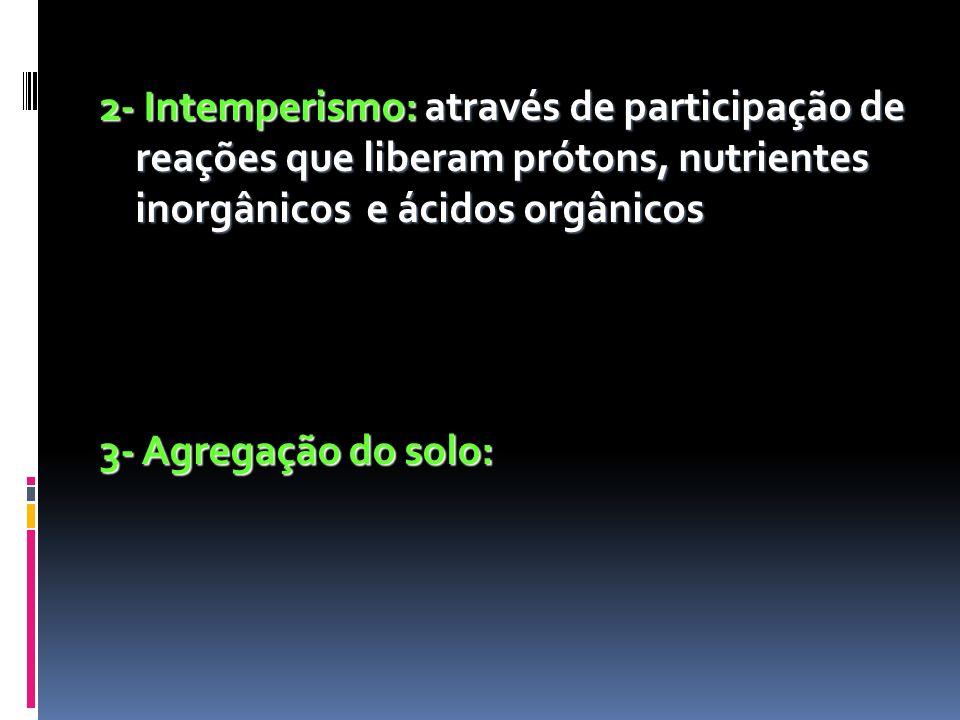 2- Intemperismo: através de participação de reações que liberam prótons, nutrientes inorgânicos e ácidos orgânicos 3- Agregação do solo: