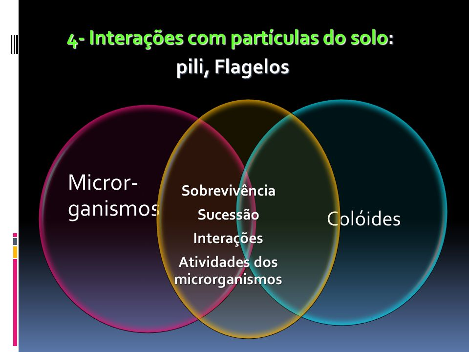 4- Interações com partículas do solo: pili, Flagelos pili, Flagelos Micror- ganismos Colóides Sobrevivência SobrevivênciaSucessãoInterações Atividades