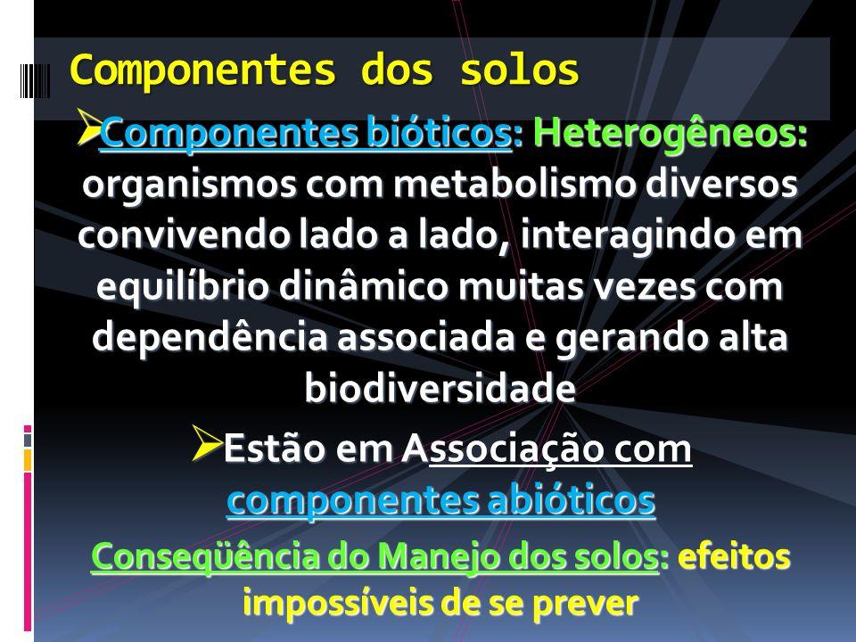 Componentes bióticos:Heterogêneos: organismos com metabolismo diversos convivendo lado a lado, interagindo em equilíbrio dinâmico muitas vezes com dep