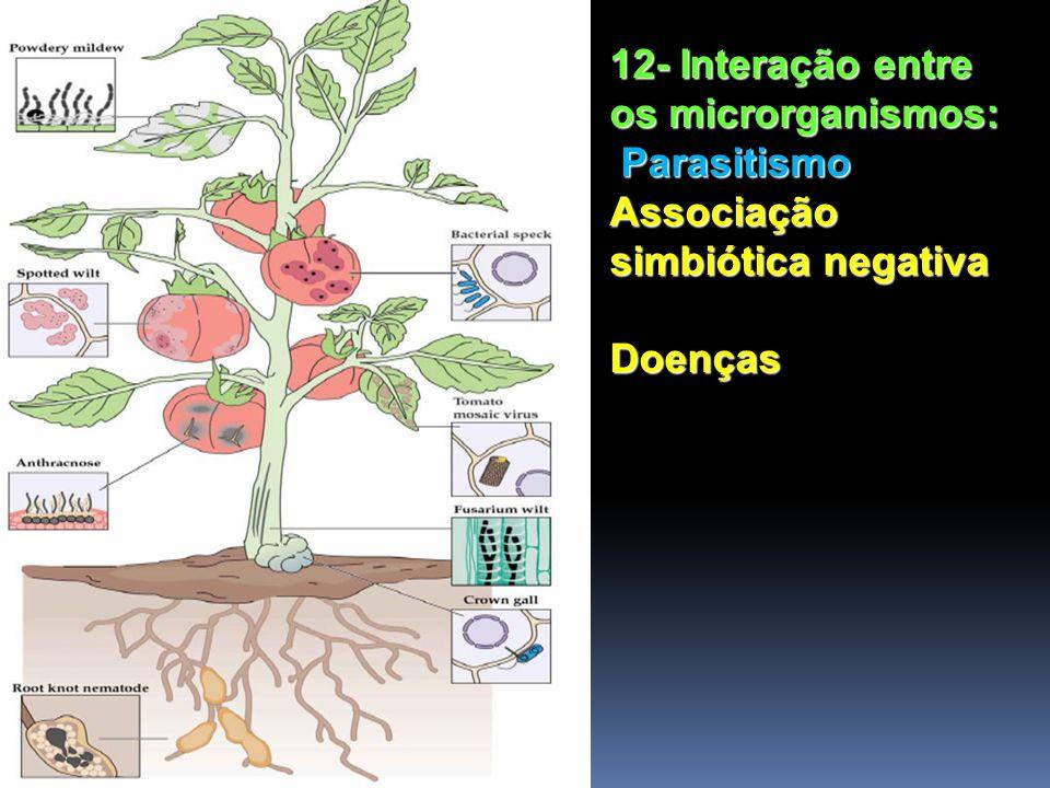 12- Interação entre os microrganismos: Parasitismo Associação simbiótica negativa Doenças